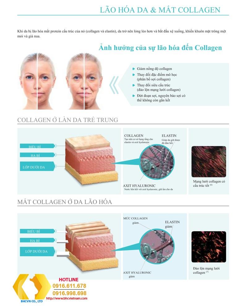 Phục hồi quá trình lão hóa mặt bằng cách sử dụng chỉ căng da mặt, nâng gò má, nâng cơ...